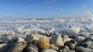 En af de dejlige ting ved at bo i Norddjurs Kommune er den spændende kyststrækning. Her Sangstrup Klint. Foto: Lilli Gruwier